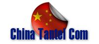 中国探偵COM