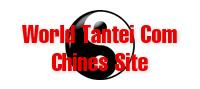 ワールド探偵.COM(中国語サイト)